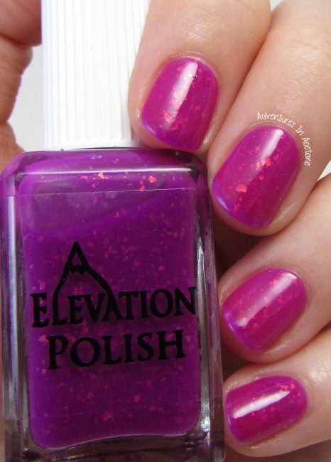 Elevation Polish Angels are the Yeti of the Clouds 2. 1