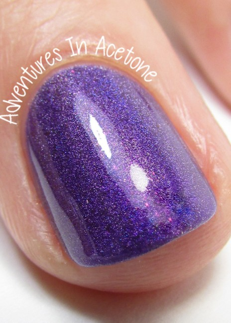 Great Lakes Lacquer Coral macro