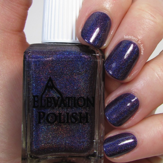 Elevation Polish Plum Zingers and New Nicknames 1