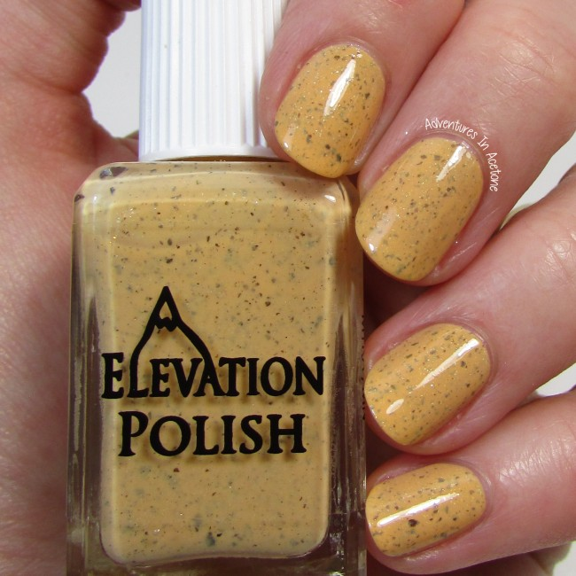 Elevation Polish Polar Bear on Roller Skates with a Mango 1
