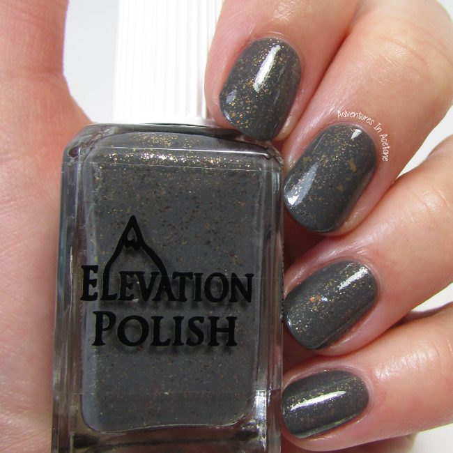 Elevation Polish Blackout Street Fox 2