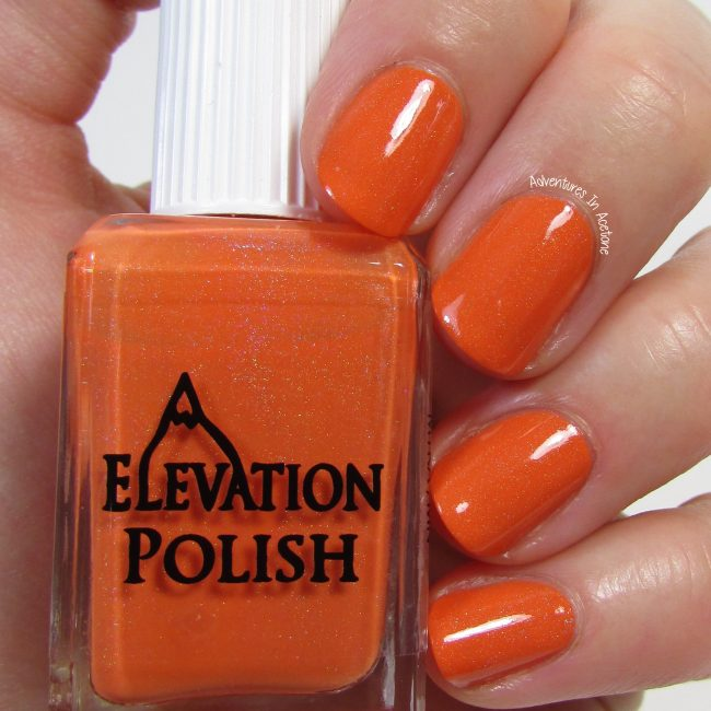 Elevation Polish Roadside Marigolds 2